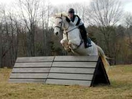 Novice Level Horse Trials