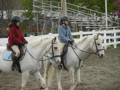 horse shows and training northern New Jersey