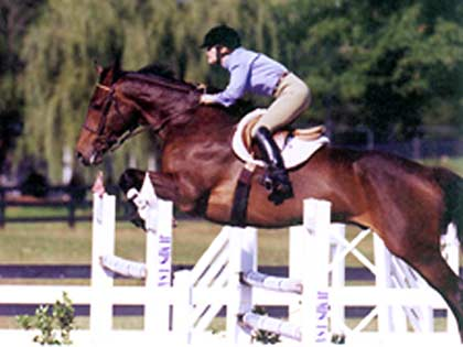 show jumping rated show HITS Saugerties